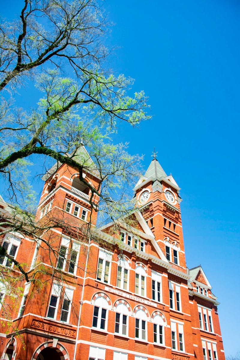 Auburn's Honor College will be featured in the PBS documentary Viewpoint with Dennis Quaid.