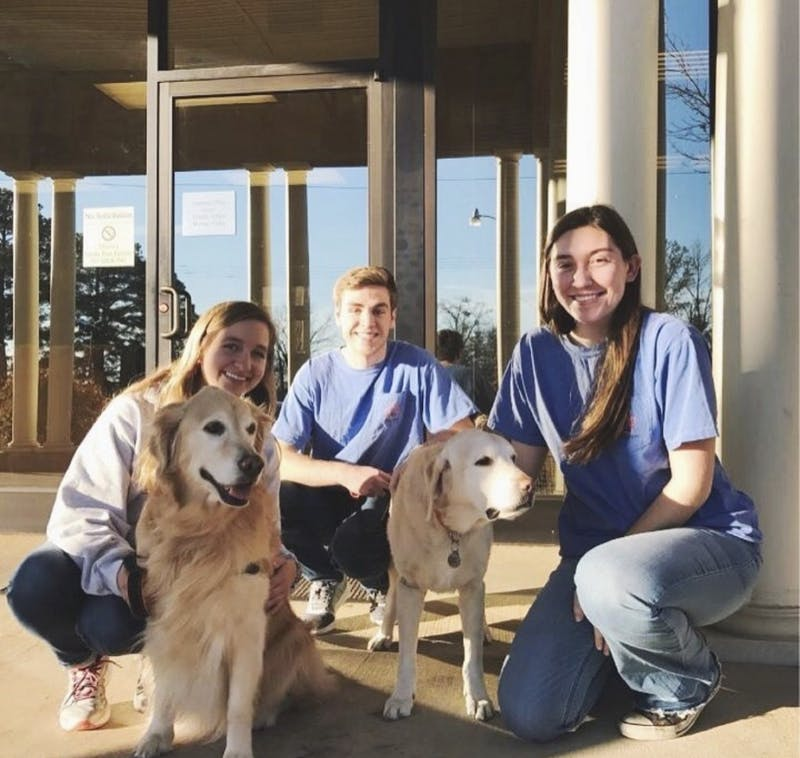 CAREing Paws is a student organization that looks to make campus aware of the benefits of therapy dogs.