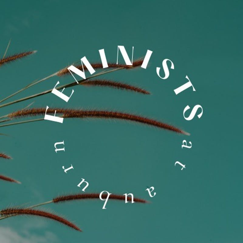 Feminists at Auburn is a student organization that recently started up to spread awareness and challenge gender norms.