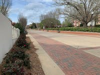 The Haley Concourse on March 23, 2020, in Auburn, Ala. after the University moved to remote instruction for the remainder of the semester.
