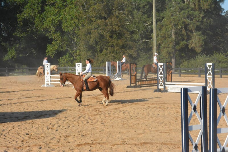 Auburn University's Equestrian Team practices at the Horse Center on September , 2018 in Auburn, Ala.