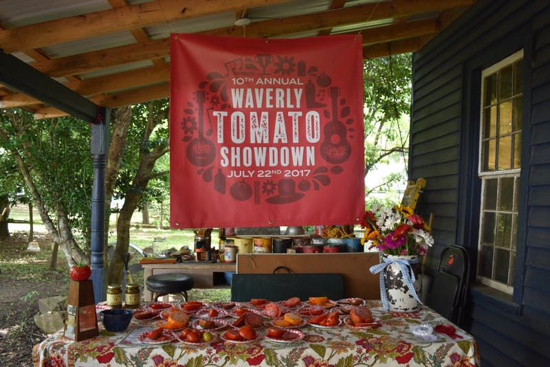 The Wavely Tomato Showdown was held on a sunny Saturday in July and welcome the town of only 150 residents to taste, judge and devour tomatoes of all shapes and colors. The event was hosted by Wickles.