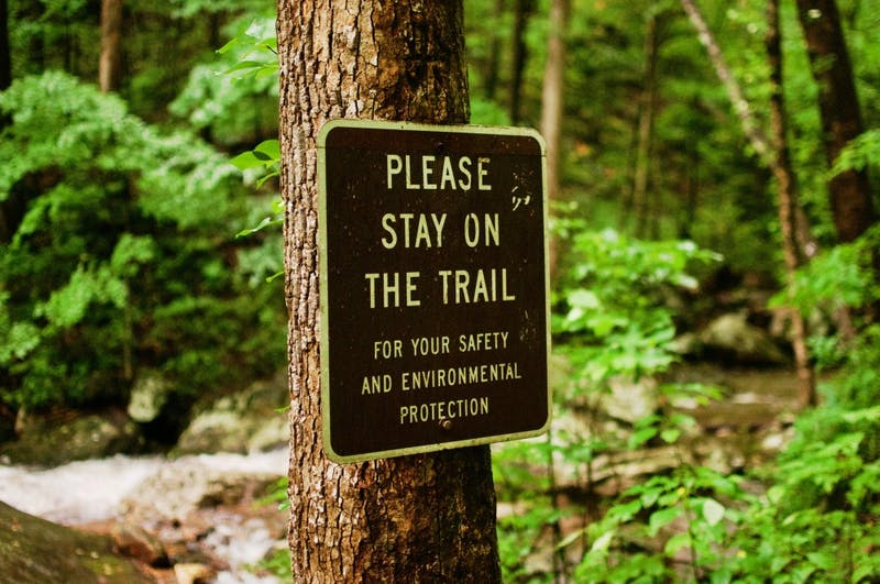 Trails are available at local camping spots and parks in the Auburn area.