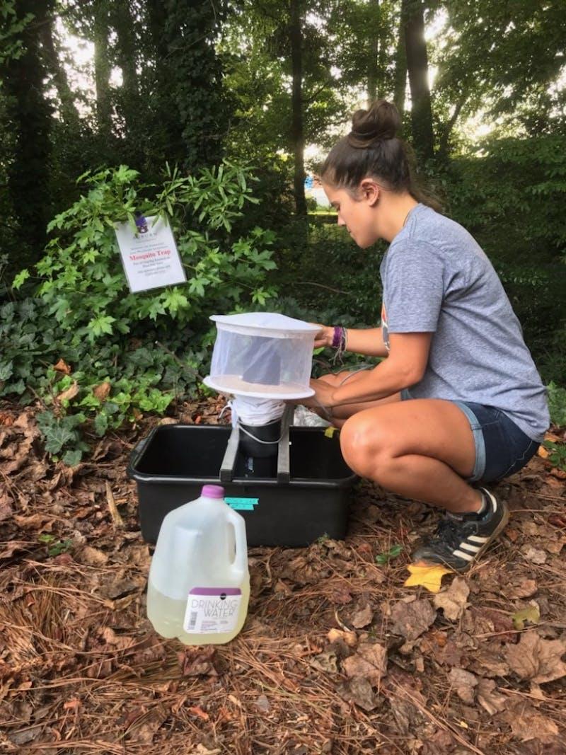 Nicole Castaneda examines a mosquito trap.