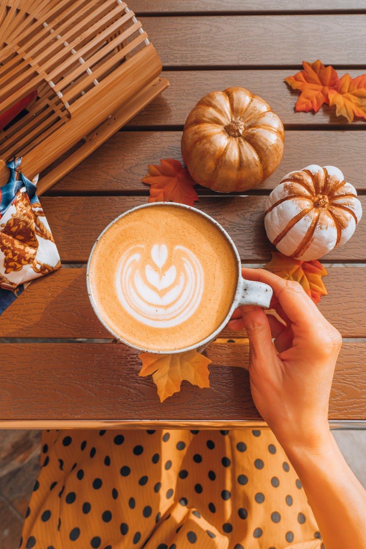 Local coffee shops give a breakdown on the pumpkin spice latte