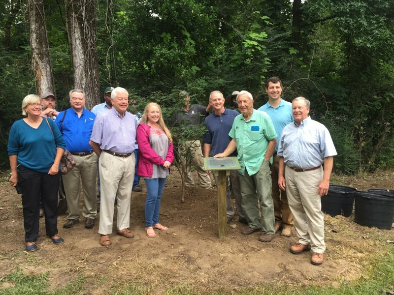 Former Auburn Head Coach Pat Dye in front of his donated Japanese maple to the George Bengston Historic Tree Trail with members of the Auburn Tree Commission and City employees on Aug. 8, 2017 in Auburn, Ala.