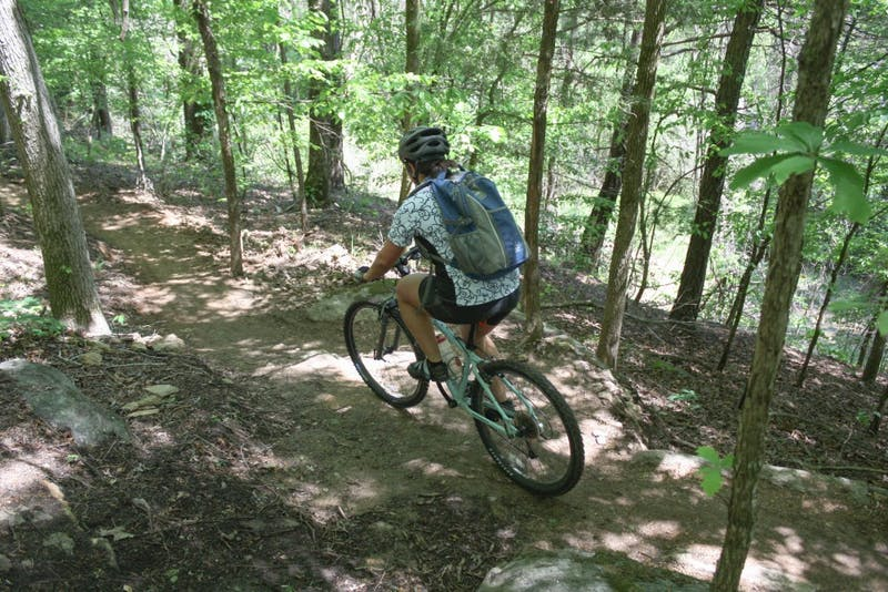A mountain biker rides the trails at Chewacla State Park. Similar trails are planned for the Standing Boy area, north of Columbus.