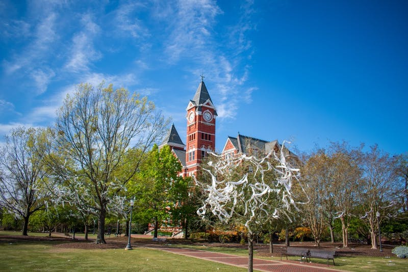 The trees at Toomer's Corner sit covered in toilet paper following a win in 2019.