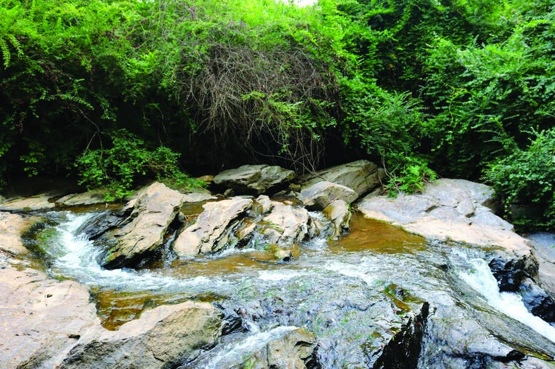 The Creekline Trails project will consist of pathways passing along Opelika's creeks.