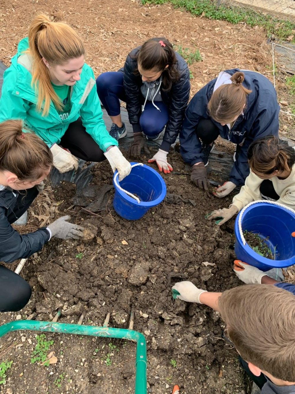 Students spend their break serving others