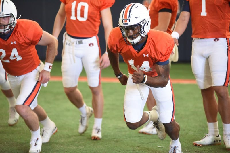 GALLERY: Auburn football open practice | 3.27.19