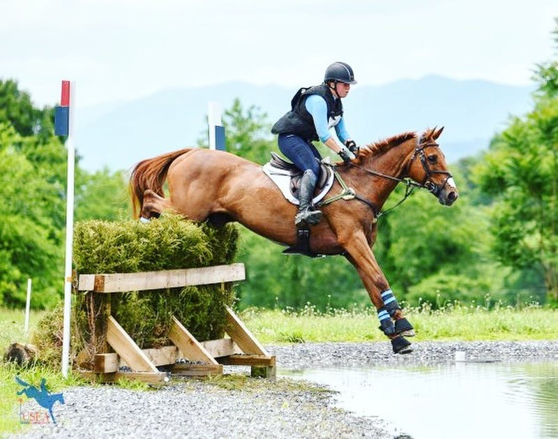 Sallie Johnson riding Looking Rosey on Cross-Country at the International CCI* level. Contributed by Sallie Johnson.
