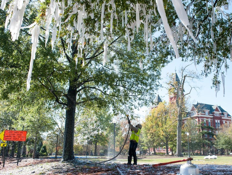 GALLERY: Clean-up at Samford Park | 11.13.17