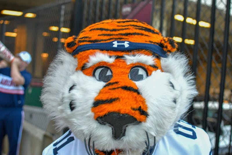 Aubie the Tiger during the Tiger Walk prior to Auburn Football vs. Mississippi State on Saturday, Oct. 6, 2018, in Starkville, Miss.