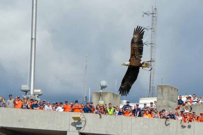 Spirit flys during the Eagle flight prior to Auburn Football vs. Southern Miss Saturday, Sept. 29, in Auburn, Ala.