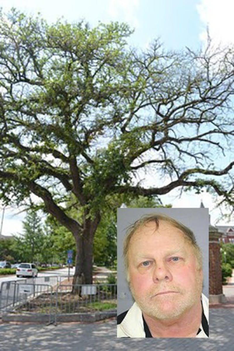 The Toomer's Oaks in 2012. Harvey Updyke, pictured right, pled guilty to poisoning the trees in 2013.