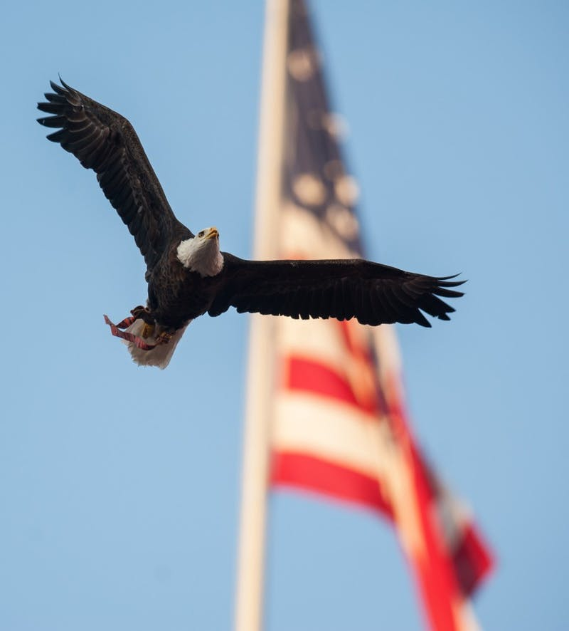 Spirit flies in front of the flag.