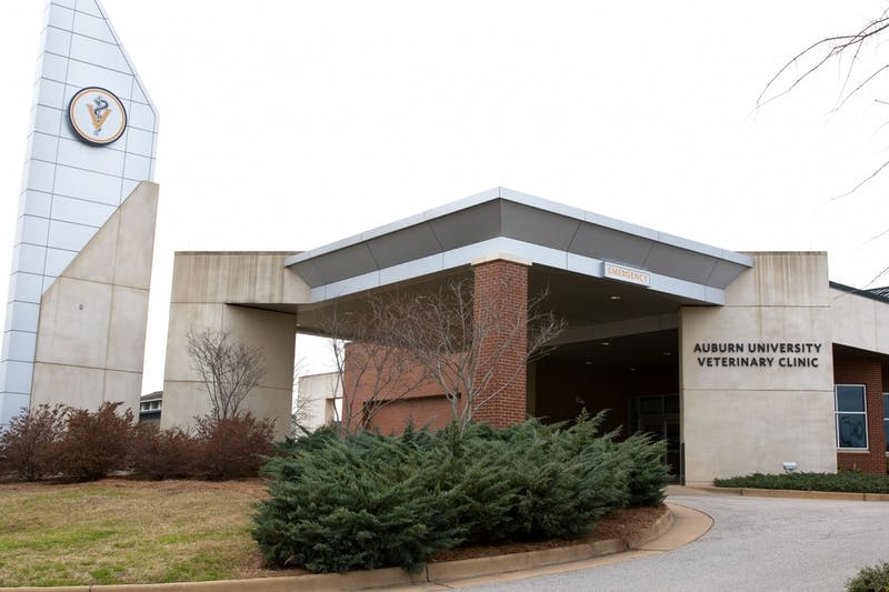 The Auburn University Veterinary Clinic in Auburn, Ala.