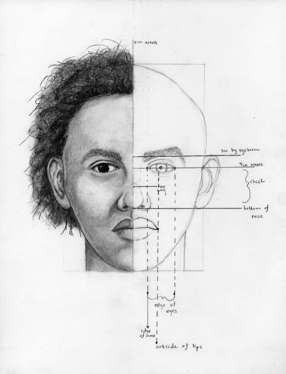 general-proportions-drawing-romero
