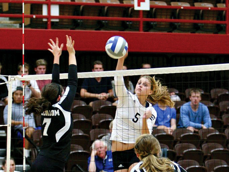 Camhi_Volleyball_HeraldStockPhoto