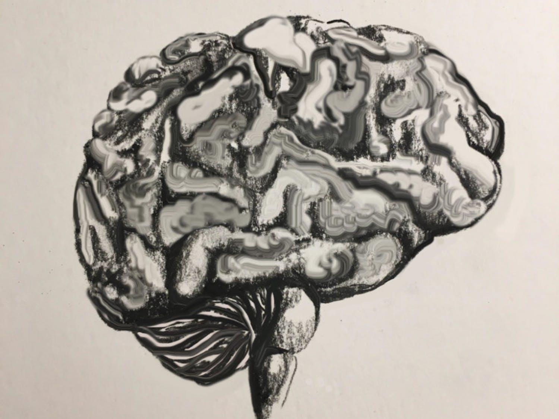 talia-mermin-illustration-1003x1024-1
