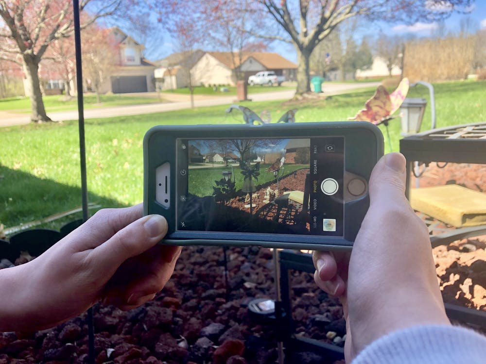 A new focus: tips, tricks for phone photography beginners