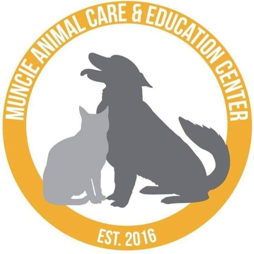 <p>The number of pets under the care of Muncie Animal Care and Services has been increasing and the shelter is hosting adoption events for discounted rates to help animals find homes. Renters must provide a copy of their pet policy prior to adopting animals. <strong>City of Muncie, Photo Provided</strong></p>