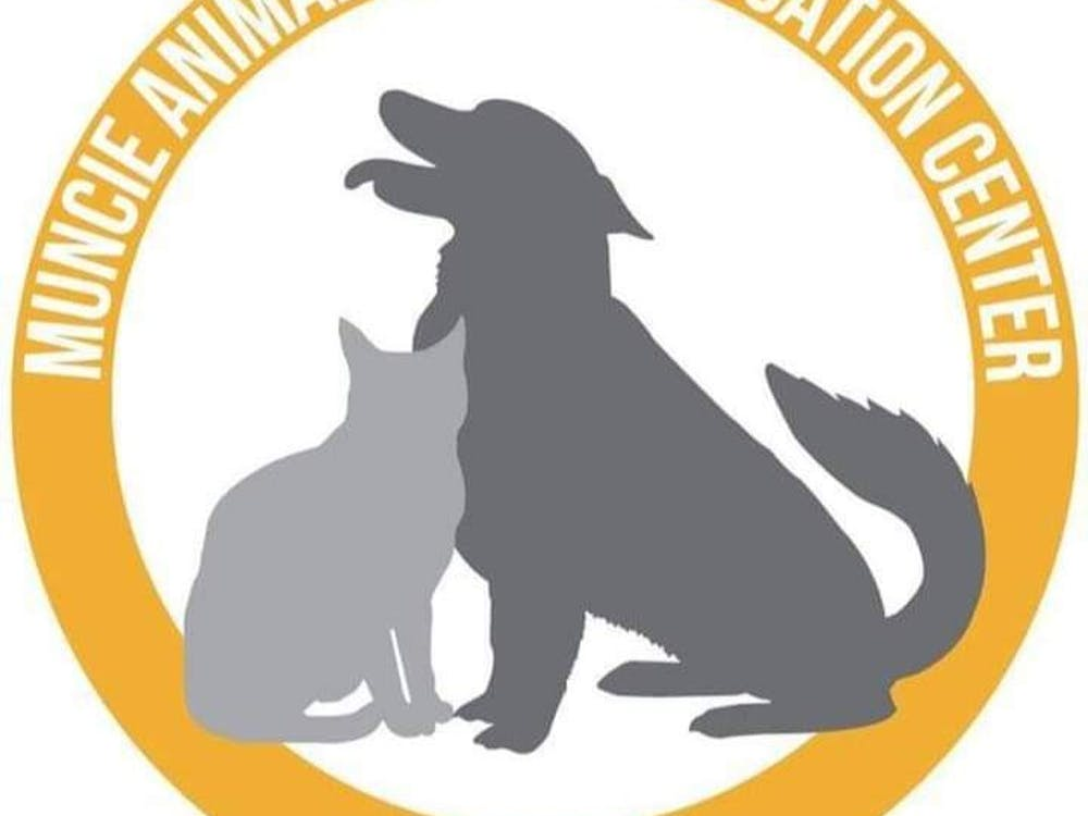The number of pets under the care of Muncie Animal Care and Services has been increasing and the shelter is hosting adoption events for discounted rates to help animals find homes. Renters must provide a copy of their pet policy prior to adopting animals. City of Muncie, Photo Provided
