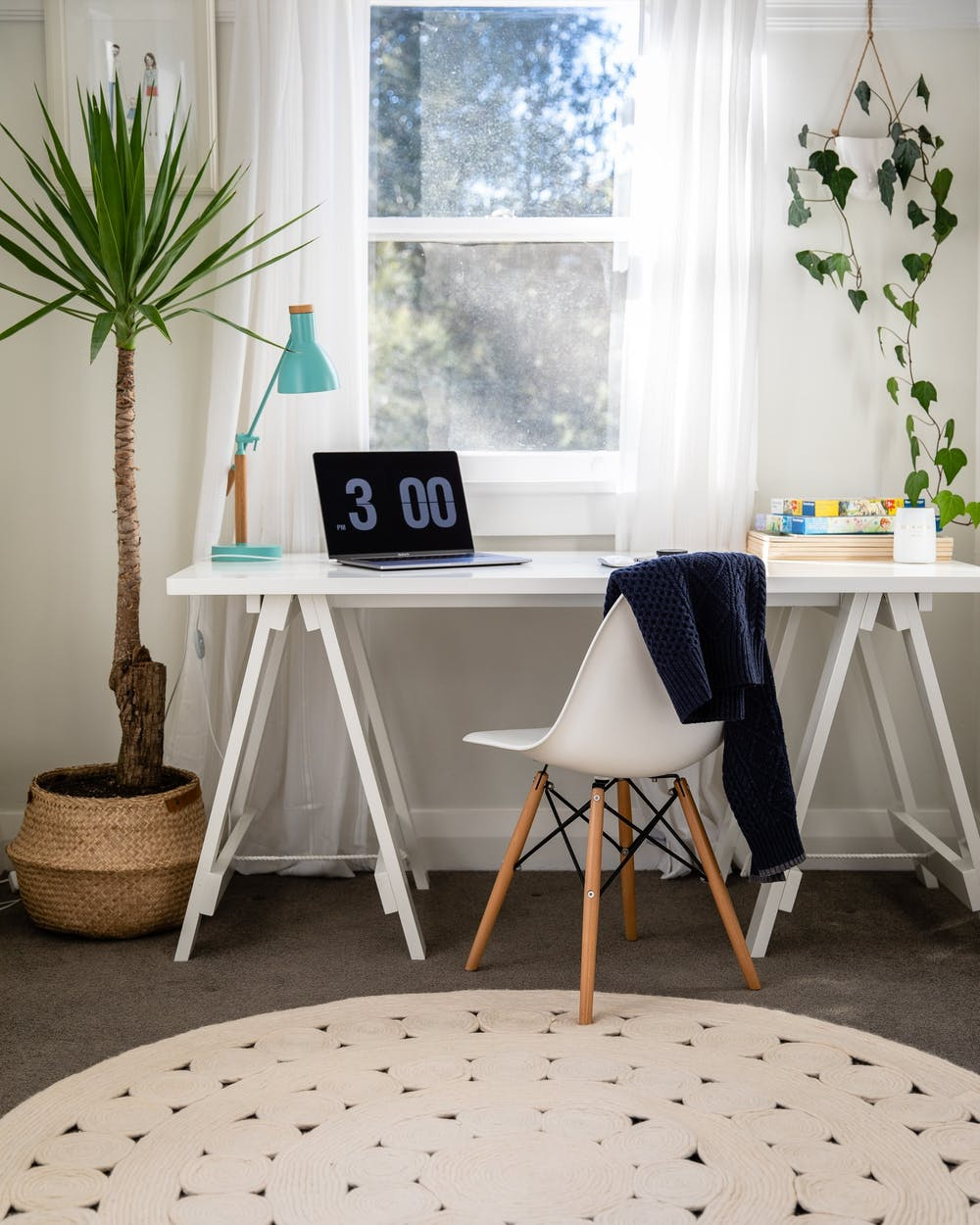 <p>Because college students have busy schedules, they may not have the time to properly care for their plants. Consider these five low-maintenance plants to bring the outside into your homes. Unsplash, Photo Courtesy</p>
