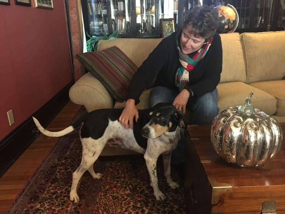 Laura O'Hara, an associate professor of communication studies, and her husband Michael O'Hara, associate Dean of the College of Fine Arts, own a coon dog named Coco. The O'Haras have owned four dogs together, and they came into connection with Coco at Muncie's ARF. Laura O'Hara // Photo Provided