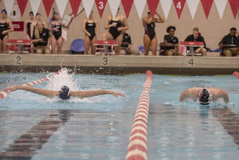Men's and Women's Swim and Dive fall to Grand Valley State