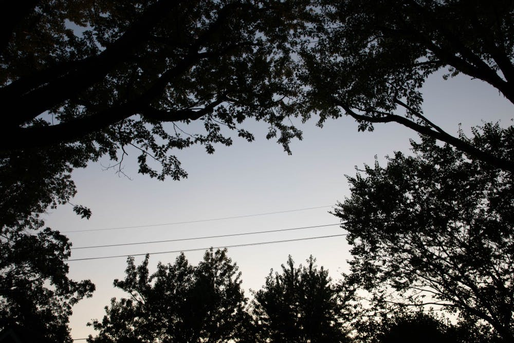 Ball State experts speak about deforestation, on-campus arboretum