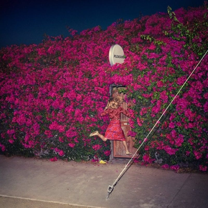 'Pleasure' by Feist: A sensual, bare-bones experience