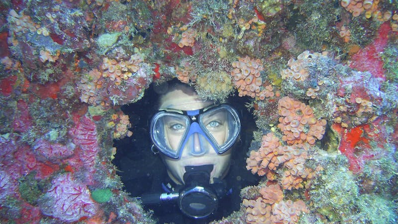 Sheli Plummer, an assistant lecturer of kinesiology, swims among the corals at the Wreck of the Duane Jan. 24, 2005, in Key Largo, Florida. Plummer lived in Key Largo, Florida after graduating from Ball State. Sheli Plummer, Photo Provided