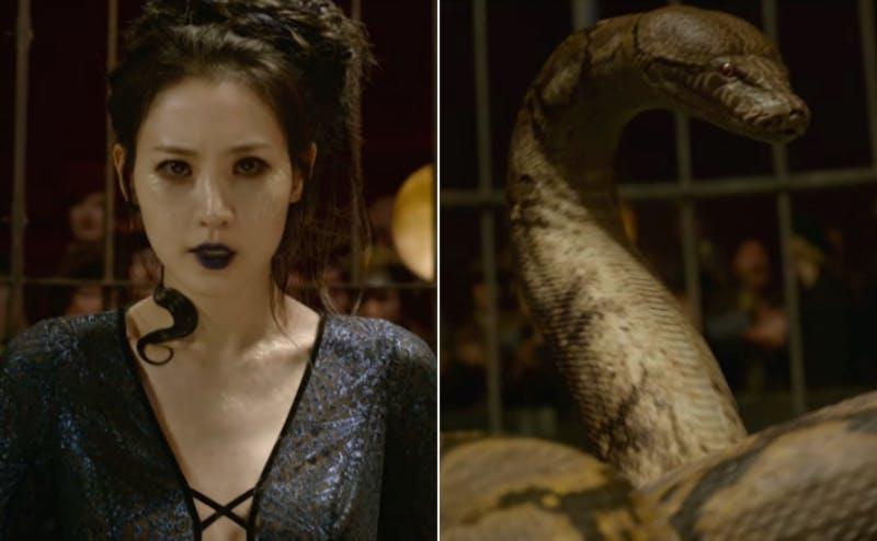 Grindelwald's crimes against the 'Harry Potter' fandom
