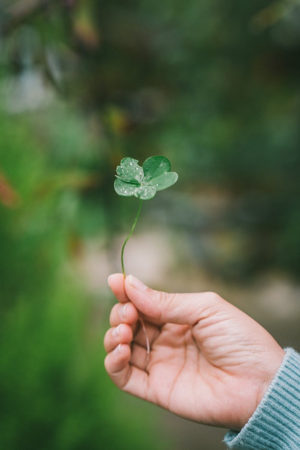 DIY decorations inspired by Pinterest can help save time and money when planning for any St. Patrick's Day party. Unsplash, Photo courtesy