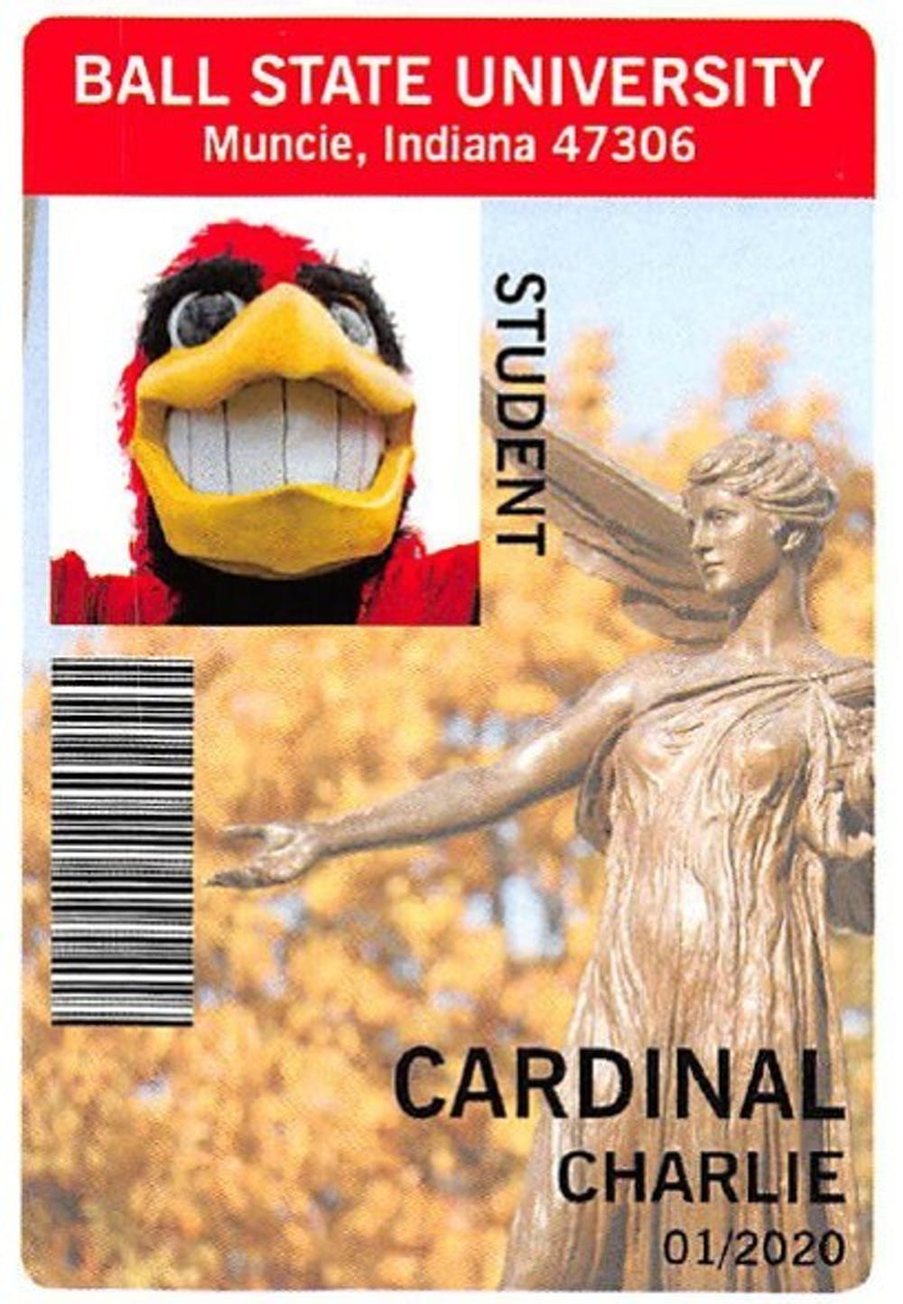 <p>On Aug. 15, the cost to replace your student ID card will increase to $25 from $10. Both Indiana University and Purdue University charge $25 to replace student IDs.&nbsp;<em>PHOTO PROVIDED BY NANCY CRONK</em></p>