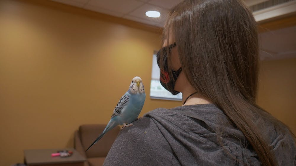 "One Ball State student is taking phrase ""emotional support animal"" to new heights"