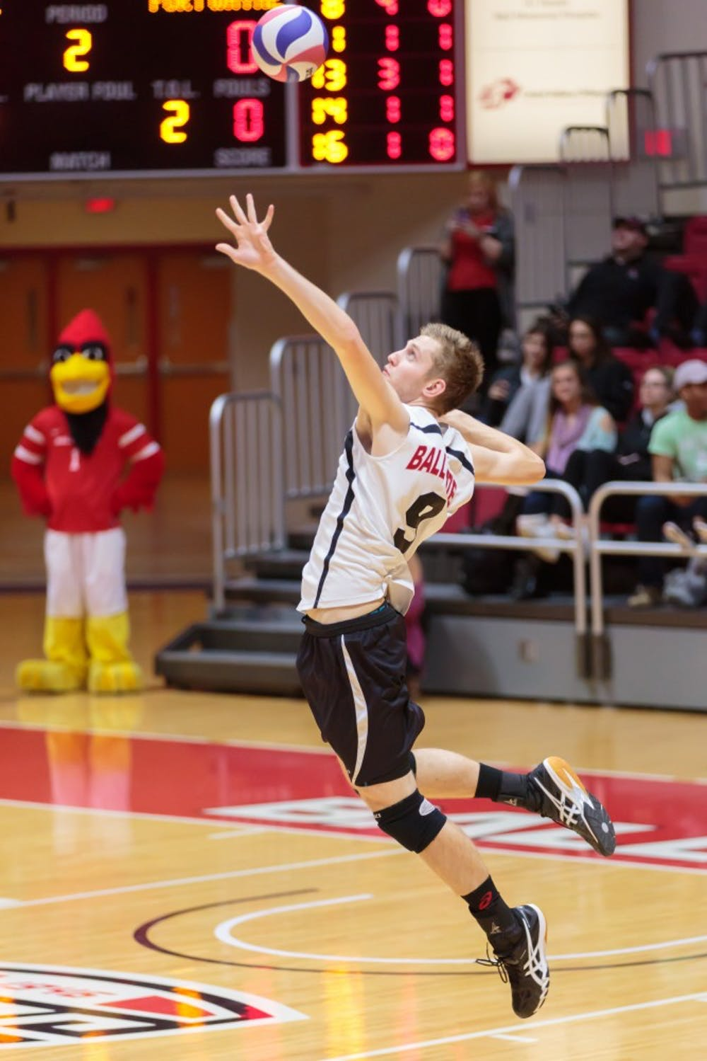 <p>Then-sophomore middle attacker Parker Swartz serves the ball during the game against Fort Wayne on Feb. 7 in Worthen Arena. The Cardinals won 3-0 against the Mastodons. <strong>Kyle Crawford, DN</strong></p>