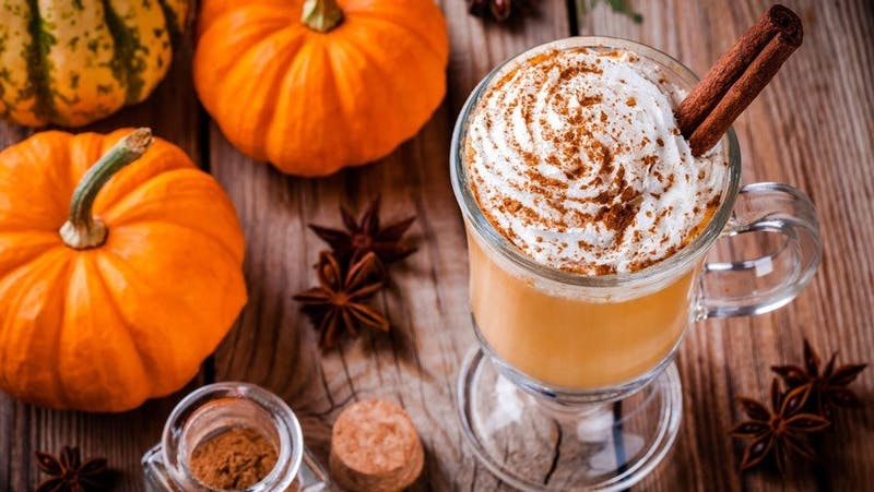 The amazing culture around 'pumpkin spice' everything