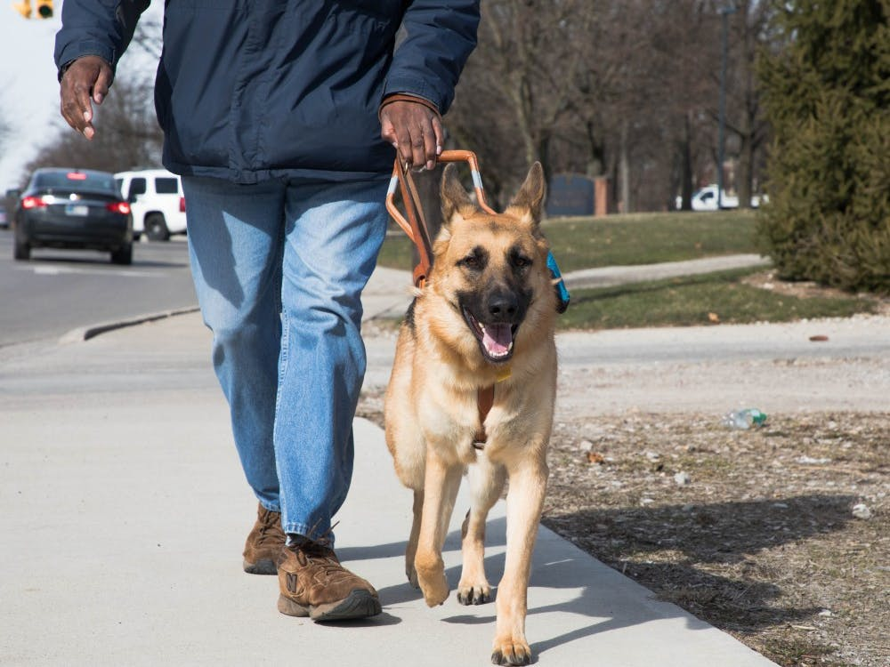 Unlike emotional support animals, service dogs must go through years of training to become service-certified.