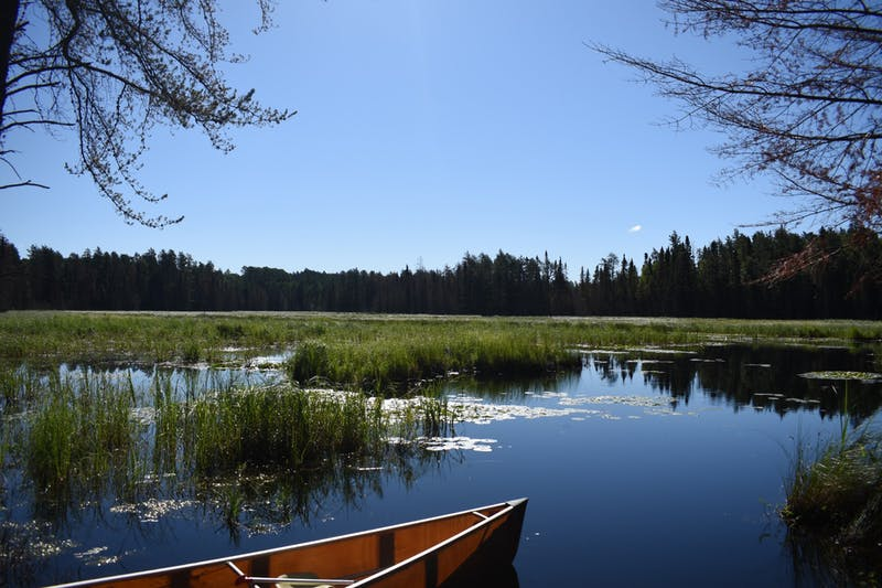A lakeside view from inside the BWCA, 2018. After hiking through the woods, it was finally time to get our canoe in the water and paddle to our campsite. Tyler Griffith, DN