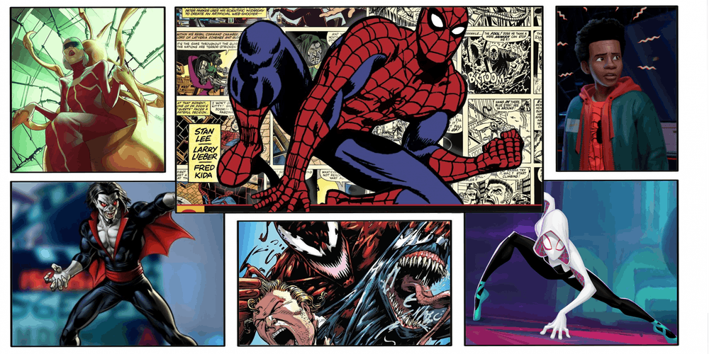 Spider feature.png