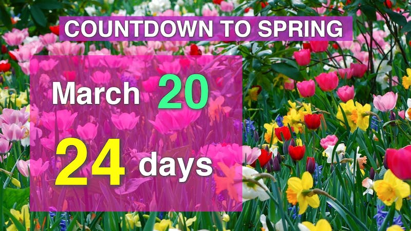 Countdown to Spring side.png