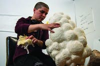 Siena Hancock cleans out a mask she is creating April 23, 2019, in PlySpace in Muncie, Indiana. PlySpace is an immersive residence program where artist can create and showcase their work. Eric Pritchett, DN