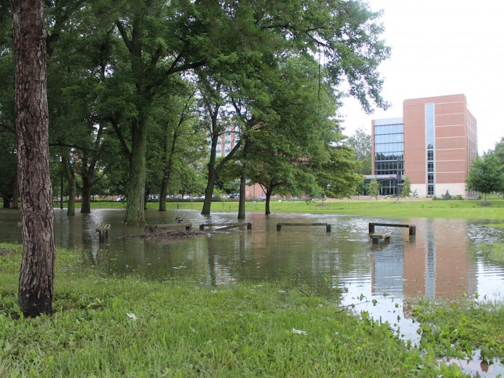 Ball State continues efforts to prevent flooding throughout campus. Howeverafter the first weeks of the spring semester brought significant amounts of rain, some parts of campus were renderedtemporarily unusable by flooding.Samantha Brammer // DN File
