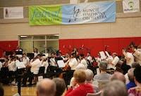 Muncie Symphony Orchestra organize Festival on the Green