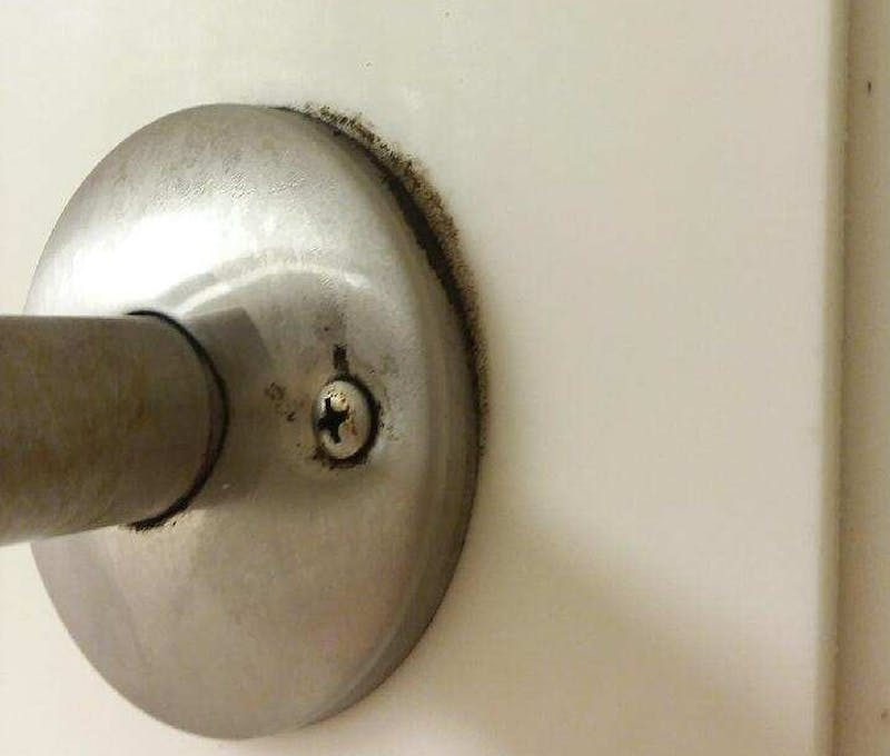 Mold found growing in a bathroom at the Noyer Complex. The associate director of housing and residence life facilities said the mold affected six student rooms but has since been eradicated.  Laini Johnson, Photo Provided