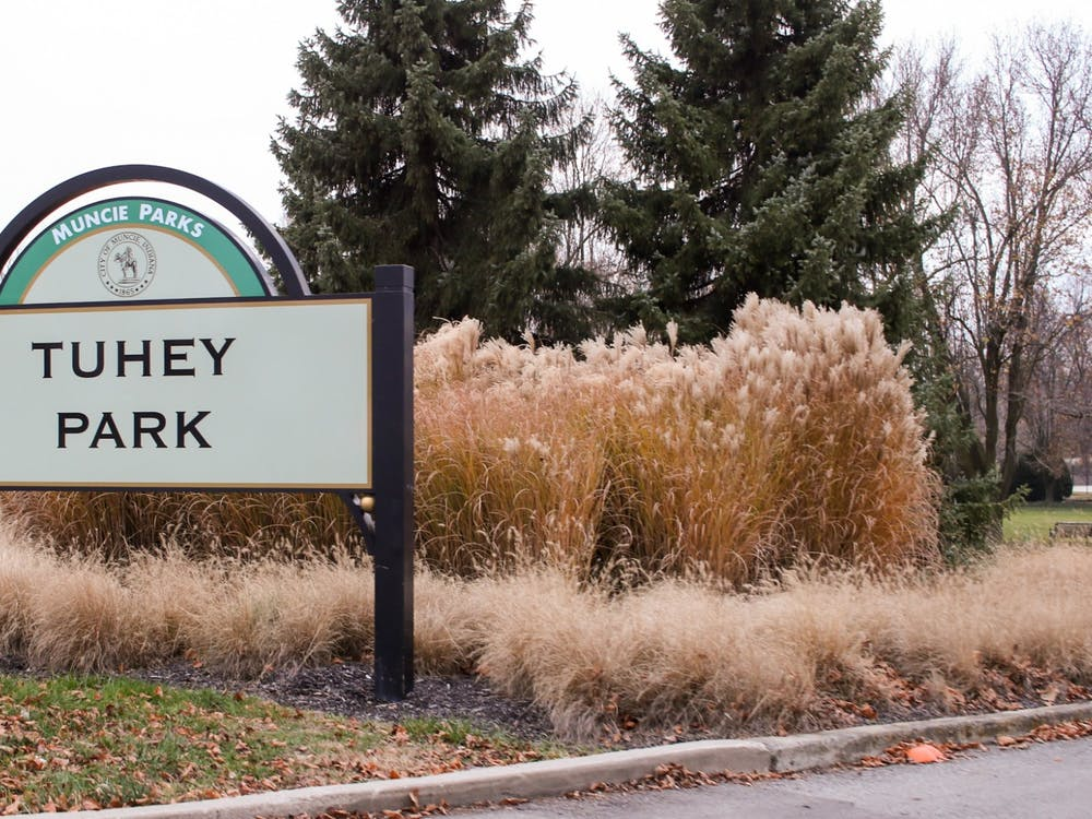 Tuhey Park's welcome sign stands at its entrance Dec. 8, 2020, at Tuhey Park. The park sits in the Riverside nieghborhood just off of White River. Maeve Bradfield, DN