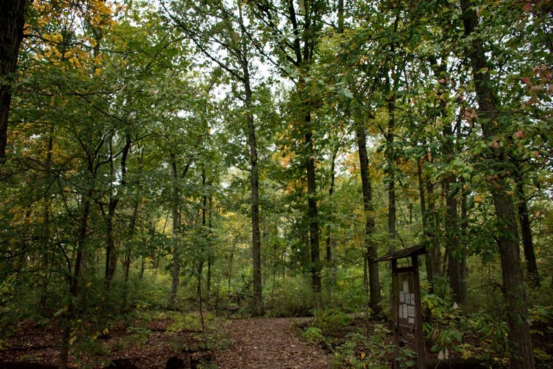 Christy Woods is 17-acres of land located on the southwest corner of campus. The area is used as an outdoor teaching laboratory for Ball State students, as well as the community. Kaiti Sullivan, DN File